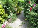 Fond d'�cran Le jardin � t�l�charger gratuitement