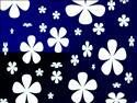 Fond d'�cran Fleurs blanches � t�l�charger gratuitement