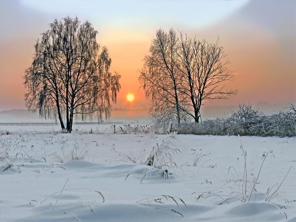 Fond d 39 cran carte postale hivernale for Fond ecran gratuit hiver