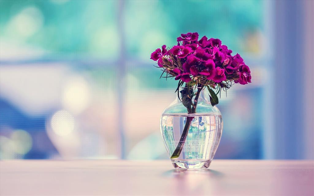fond d'écran bouquet de fleurs