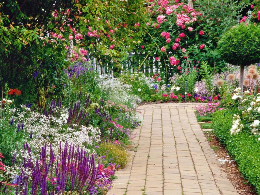 Fond d 39 cran jardin fleuri for Ecran exterieur