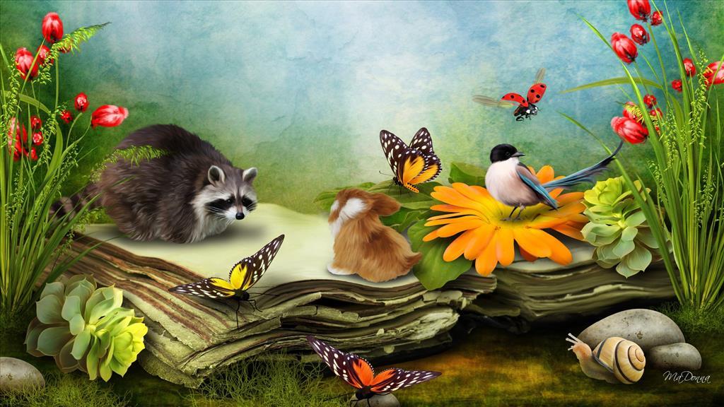 """Résultat de recherche d'images pour """"photos nature gratuite"""""""